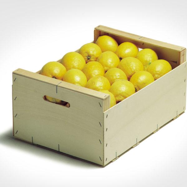 40×30 limones