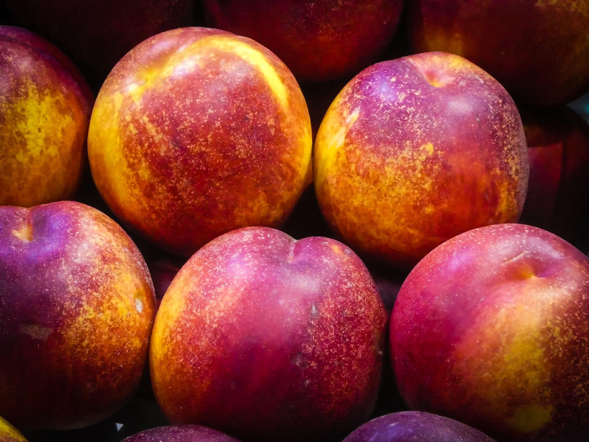 frutas_del_mes_de_junio_nectarinas