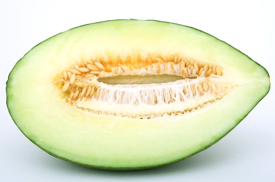 frutas_del_mes_de_junio_melon