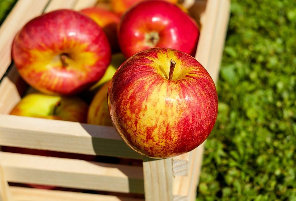manzanas_octubre